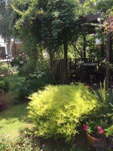 NH garden 2